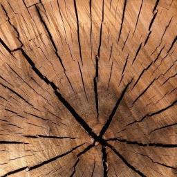 Usługi Stolarskie Kraina Drewna - Land of Wood - Meble Kuchenne Na Wymiar Miłosław