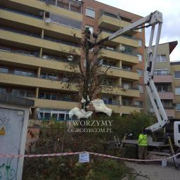 Cięcia drzew z użyciem wysięgnika