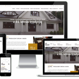 Strona internetowa - producent drzwi