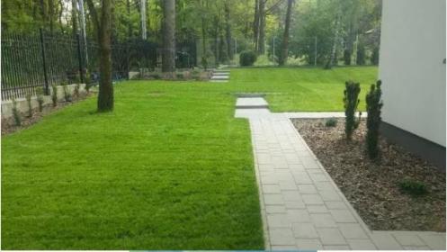 Ogród Express - Projektowanie ogrodów Ostrów Mazowiecka