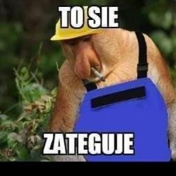 GlinBon - Płyta karton gips Sobibór