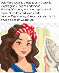 Serwis domowy - Mycie okien Płock