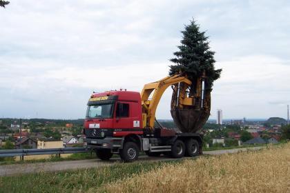 DrewsmoL - Projektowanie ogrodów Badów górny