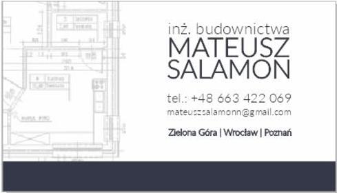 In Construkction, Mateusz Salamon - Usuwanie Śniegu z Dachu Krosno Odrzańskie