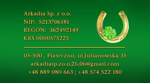 ArkadiaSp. z o.o. - Budowa domów Piaseczno