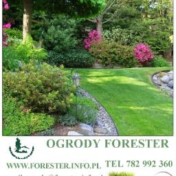 Forester - Ogrodnik Laliki