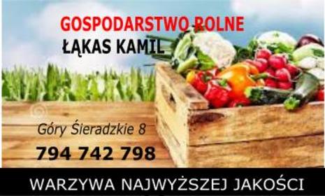 Gospodarstwo rolne - Warzywa Góry sieradzkie
