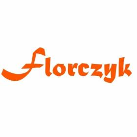 P.U.H. Marcin Florczyk - Monitoring Pruszcz Gdański