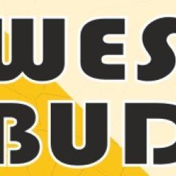 WES-BUD - Usługi Budowlane Libiąż