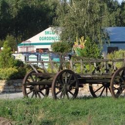 PATMAR - Nasiona, cebulki Lutomiersk