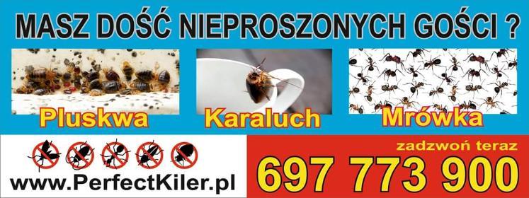 Perfect Kiler - Agencje i biura obsługi nieruchomości Warszawa