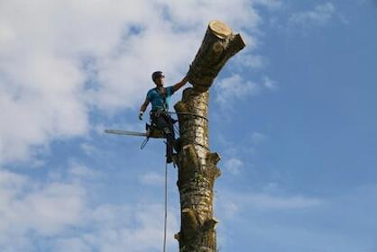 ACRID - Odśnieżanie dachów Pruszków