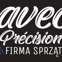 Avec Précision Firma Sprzątająca - Pomoc domowa Bydgoszcz