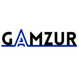 """GAMZUR"" PIOTR SZURA - Programista Borkowo"