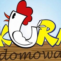 Kura domowa - Agencje Eventowe Zamość