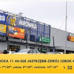 F.H.U BUDBIEL Mariusz Bielaszka - Hurtownia Paneli Podłogowych Jastrzębie-Zdrój