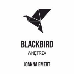 Blackbird wnętrza - Aranżacje Wnętrz Czarne