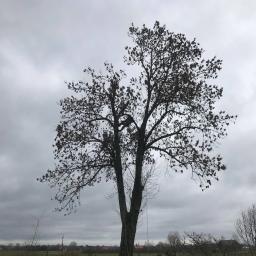 Xrope - Odśnieżanie dachów Czosnów