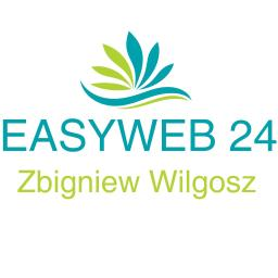 EASYWEB24 Zbigniew Wilgosz - Elektryk Leszno dolne