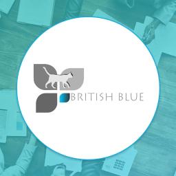 BRITISH BLUE LEGNICA - Szkoła Językowa Legnica