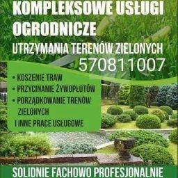 Kompleksowe usługi ogrodnicze - ogrodzenia - Siatka ogrodzeniowa Rytro