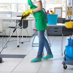 Cleaning24 sp.z.o.o. - Elewacje i ocieplenia Bieruń