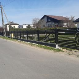 IRONWORK - Ogrodzenia kute Pietrzykowice