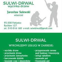 SULWI-DRWAL Jarosław Sulewski Wycinka drzew - Prace działkowe Pabianice
