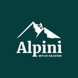 Alpini - mycie dachów - Mycie elewacji Międzychód