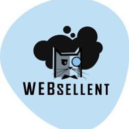 WEBsellent Mateusz Biegun - Sklep internetowy Bielsko-Biała