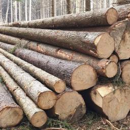 Logger - Drewno Budowlane Prudnik