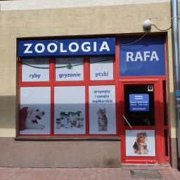 Sklep zoologiczn Rafa - Ryby Kraków