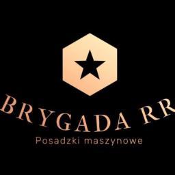 Brygada RR - Posadzki żywiczne Dobromierz