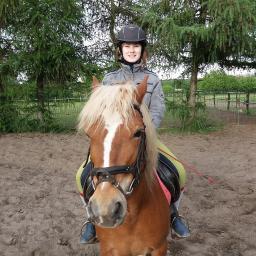 Jeździecki Uczniowski Klub Sportowy w Głodowie. Nauka jazdy konnej Koninj Konin - Organizacja imprez sportowych Konin
