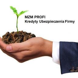 MZM PROFI Marek Zieliński - Faktoring Racibórz