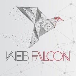 WebFalcon Sp. z o.o. - Strony internetowe Kraków