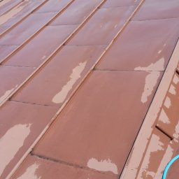 Czyste okna - Mycie Dachów Pabianice