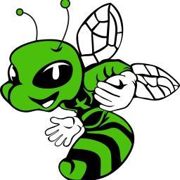 Green Hornet School - E-learning Lubin