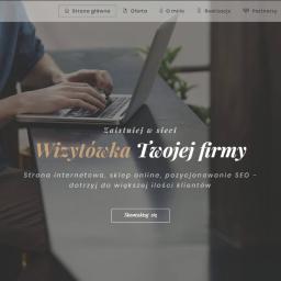 Agencja interaktywna http://webplace.pl/