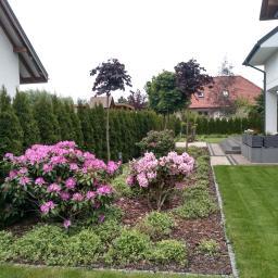 Estetica Garden Monika Róg - Budowa Ogrodu Zimowego Rzeszów
