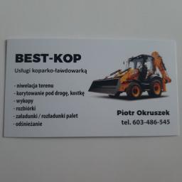 BEST-KOP Piotr Okruszek - Transport ciężarowy krajowy Pabianice