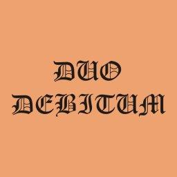 DUO-DEBITUM partner VIVIAMO Ubezpieczamy - Ogniwa Fotowoltaiczne Radom