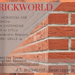 AS BrickWorld - Elewacje Katowice