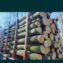 DREW-MAT - Drewno kominkowe Chmieleniec