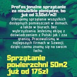 MON-CLEAN Monika Jezierna - Mycie okien Płock