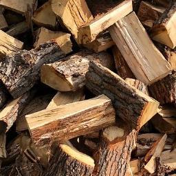 P.P.U.H. Modrzew - Trociny i zrębki drzewne Opoczno