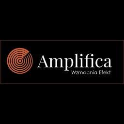 Amplifica sp. z o.o. - Kampania Reklamowa w Internecie Łódź