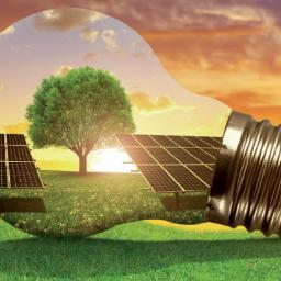 Janusz Myrcha Eco Light Energy P.P.H.U. - Remonty mieszkań Biała Podlaska