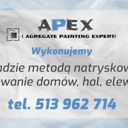 APEX Agregat Painting Expert Tomasz Smogorzewski - Szpachlowanie Dębe