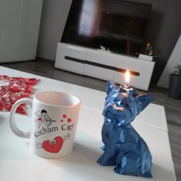 Candlesp PIOTR SZWED Produkcja Świec Dekoracyjnych - Kosze Upominkowe Panoszów